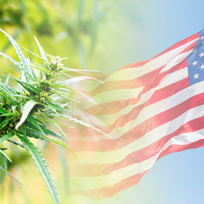 History of Hemp in the U.S.