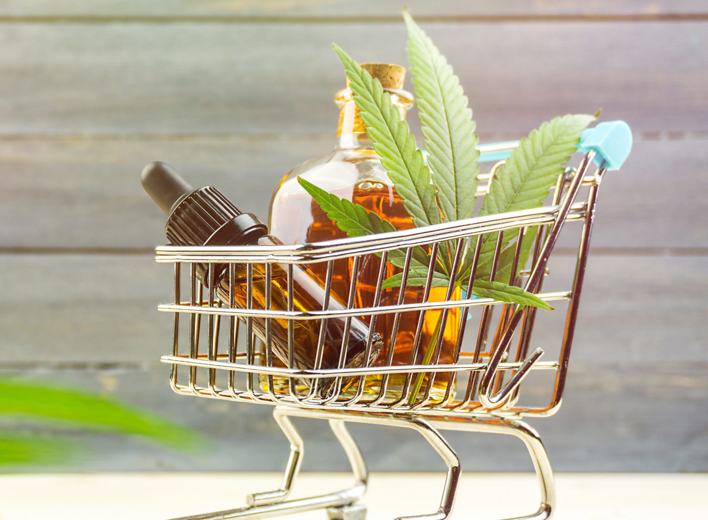 Shopping for Cannabinoids: A Buyer's Guide