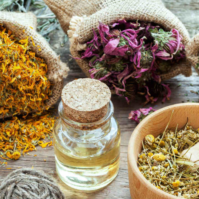 Adaptogens – Support for Adapting to Everyday Situational Stress